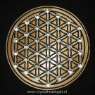 Flower of life levensbloem heilige geometrie sacred geometry